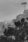 Sri Lanka 2012 Jirka-2719